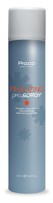 Finalizing Pro.Spray | professional hair product